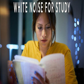 WHITE NOISE FOR STUDY by Color Noise Therapy