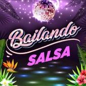 Bailando Salsa de Various Artists