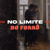 No Limite do Forró de Various Artists