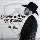Cuanto a Que Te Olvido by Nito Gomez