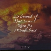 25 Sounds of Nature and Rain for Mindfulness de Rainmakers