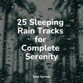25 Sleeping Rain Tracks for Complete Serenity by Zen Meditate