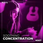Soothing Concentration 007 de Various Artists