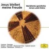 Jesus bleibet meine Freude (ELO) von Various Artists