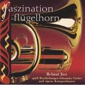 Faszination Flügelhorn by Helmut Jost