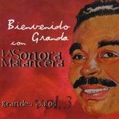 Grandes Exitos Vol. 3 by Bienvenido Granda