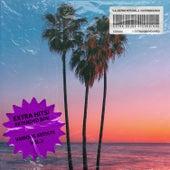 EXTRA HITS, Vol. 3: Extended Box de Various Artists