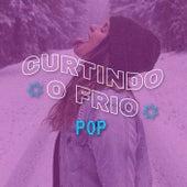 Curtindo o Frio Pop de Various Artists