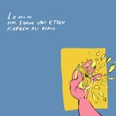 Lemon (Kareem Ali Remix) by Local Natives