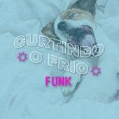 Curtindo o Frio Funk de Various Artists