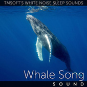 Underwater Whale Song Ambience by Tmsoft's White Noise Sleep Sounds