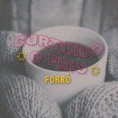 Curtindo o Frio Forró de Various Artists