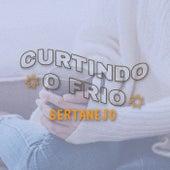 Curtindo o Frio Sertanejo de Various Artists