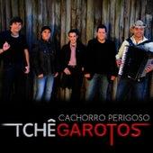 Cachorro Perigoso - Single von Tchê Garotos