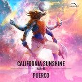 Puerco de California Sunshine