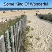 Some Kind of Wonderful de Kenneth Widra