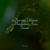 25 Spa and Ultimate Mindfulness Rain Sounds di Lullabies for Deep Meditation