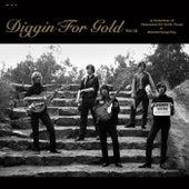 Diggin' For Gold vol 12 fra Various Artists