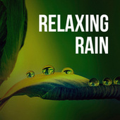 Relaxing Rain by Sounds for Life