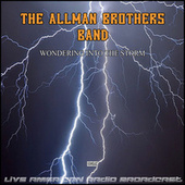 Wondering Into The Storm (Live) de The Allman Brothers Band
