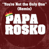 You're Not the Only One (feat. Aj Brown) (Remix) de Papa Rosko