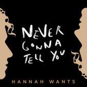 Never Gonna Tell You de Hannah Wants