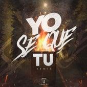Yo Se Que Tu (Remix) de Tomi Dj
