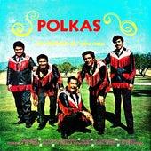 Polkas de Los Gorriones Del Topo Chico