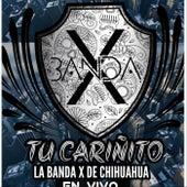 Tu Cariñito (En Vivo) de La Banda X de Chihuahua