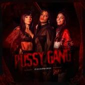 Pussy Gang von Mc Rebecca