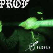 Tarzan by PROF