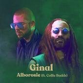 Ginal (feat. Collie Buddz) di Alborosie