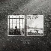 Polaroids by Far