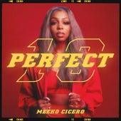 Perfect 10 de Meeko Cicero