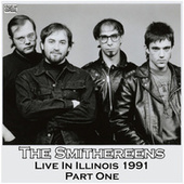 Live In Illinois 1991 Part One (Live) by The Smithereens