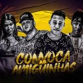 Convoca as Amiguinhas (feat. MC Marcelly) (Brega Funk) von DJ DS Mano Cheffe