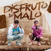 Disfruto Lo Malo by Junior H