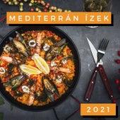 Mediterrán Ízek 2021 de Various Artists