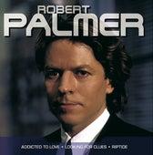 Robert Palmer - Popstars von Robert Palmer