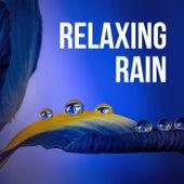 Relaxing Rain by Relaxing Spa Music