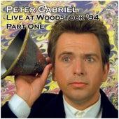 Live at Woodstock '94 Part One (Live) fra Peter Gabriel