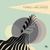 Tones & Melodies, Vol. 3 by Various Artists