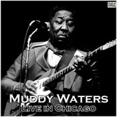 Live in Chicago (Live) de Muddy Waters