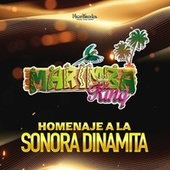 Homenaje a La Sonora Dinamita de Marimba King