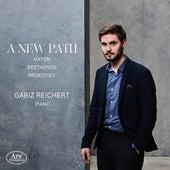 A New Path de Gabiz Reichert