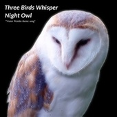 Night Owl (Victor Wardin Theme Song) de Three Birds Whisper