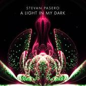 A Light in My Dark by Stevan Pasero