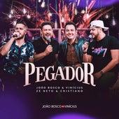 Pegador by João Bosco & Vinícius