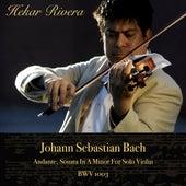 Bach: Andante for Solo Violin in A Minor, BWV 1003 von Hekar Rivera