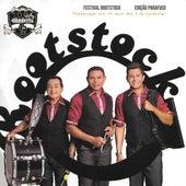 Festival Rootstock 2015 (Ao Vivo) de Various Artists